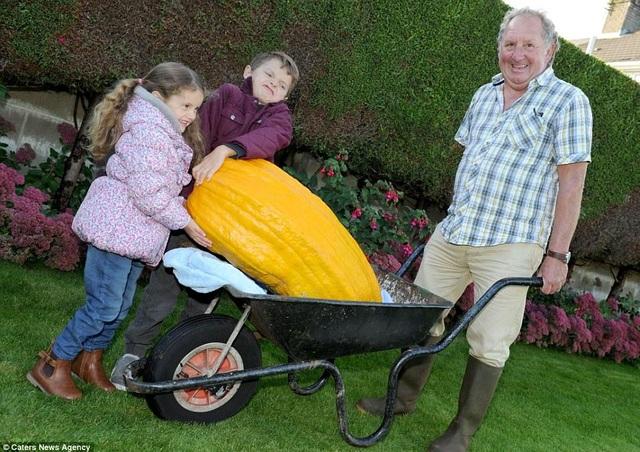 Choáng ngợp khu vườn siêu khổng lồ, rau bắp cải cũng nặng đến... 45kg - 4