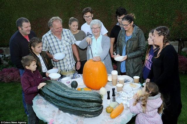 Choáng ngợp khu vườn siêu khổng lồ, rau bắp cải cũng nặng đến... 45kg - 9