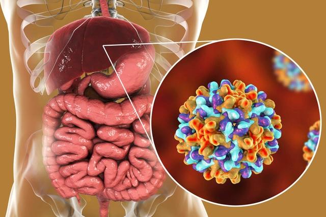 Bỏ điều trị viêm gan B, người bệnh đối mặt với những rủi ro nào? - 1