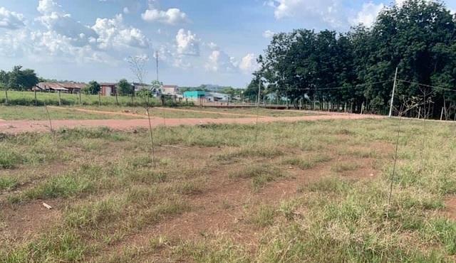 Bất động sản Nhơn Trạch: Không ít nhà đầu tư sa lầy, đang tìm cách thoát ra - 3