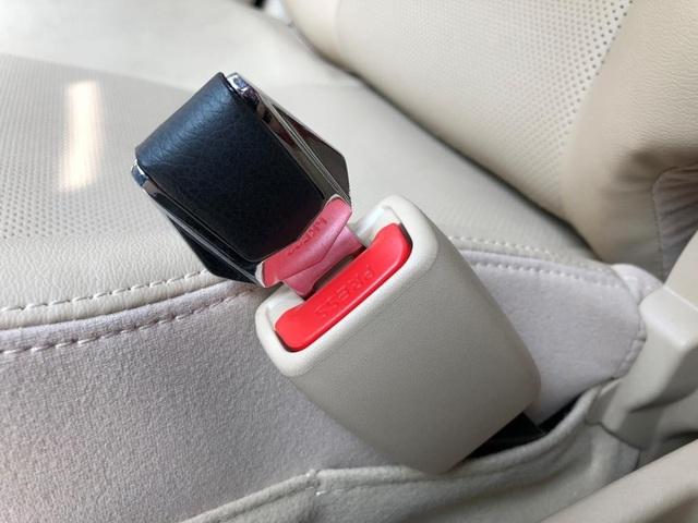 Ai là người cần cài dây an toàn khi đi ô tô? - 3