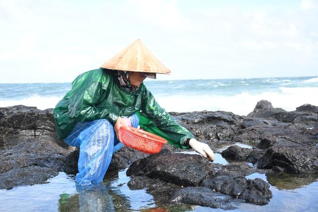 Cuối năm, đội sóng hái rong mứt trên đá nham thạch - 1