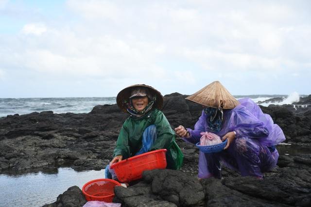 Cuối năm, đội sóng hái rong mứt trên đá nham thạch - 4