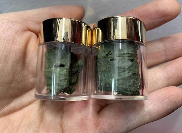 Tiết lộ về loại lá khô đắt đỏ nhất Việt Nam, giá bán cả trăm triệu đồng/kg - 1