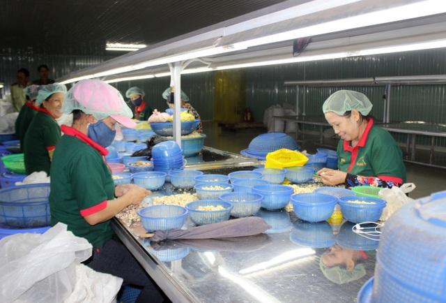Gần 40.000 lao động nông thôn được học nghề miễn phí, có thu nhập ổn định - 2