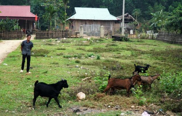 Bài 1: Chung tay xóa trũng nghèo miền Tây Nghệ An - 4