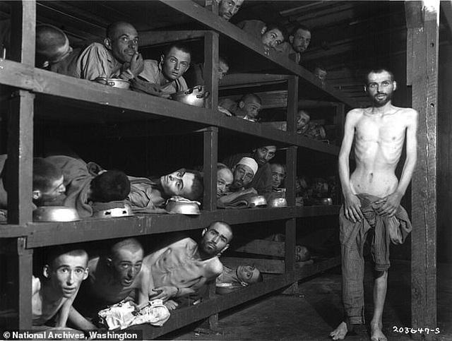 Hé lộ đường hầm bí mật nơi Hitler chôn 21 tấn vàng tử thần - 2
