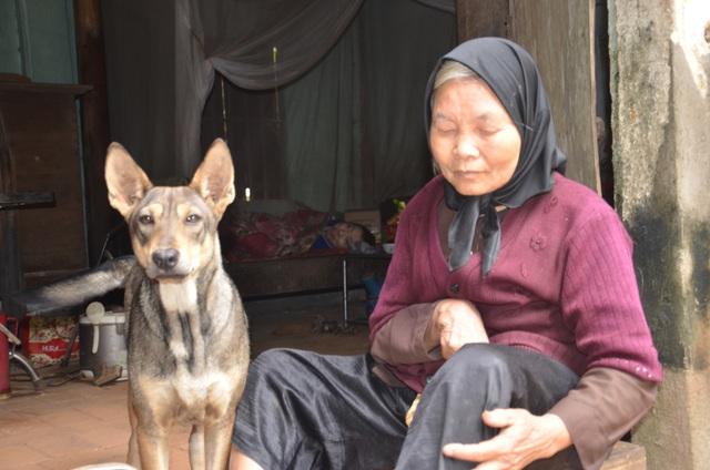 Chú chó thông minh nhiều lần cứu mạng cụ bà bị liệt chăm con bại não - 2