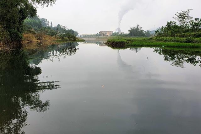 Cả khúc sông đen như mực nghi do nhà máy chế biến gỗ xả thải - 1