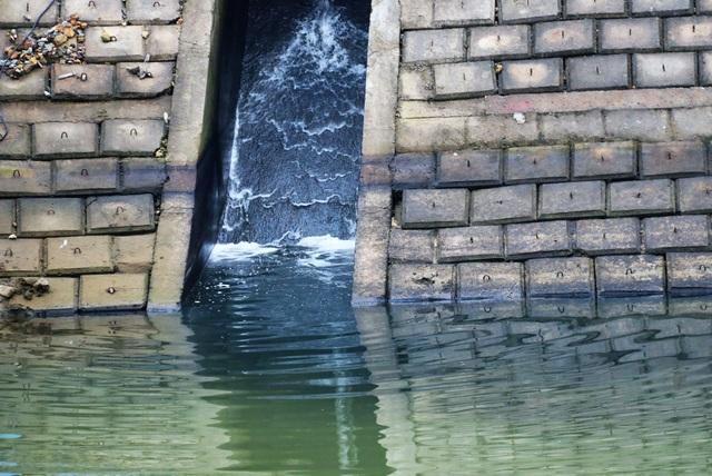 Cả khúc sông đen như mực nghi do nhà máy chế biến gỗ xả thải - 3