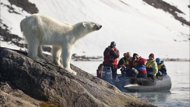 Nơi khách đến sống không cần visa, gấu Bắc Cực nhiều hơn con người - 3