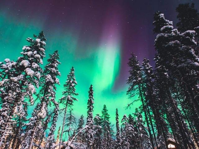 Nơi khách đến sống không cần visa, gấu Bắc Cực nhiều hơn con người - 7