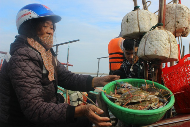 Hà Tĩnh: Mùa cá cháo bãi ngang những ngày cuối năm 2020 - 11
