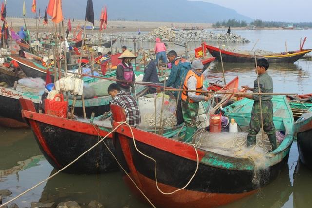 Hà Tĩnh: Mùa cá cháo bãi ngang những ngày cuối năm 2020 - 1