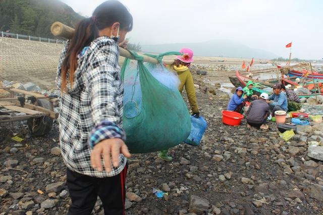 Hà Tĩnh: Mùa cá cháo bãi ngang những ngày cuối năm 2020 - 17