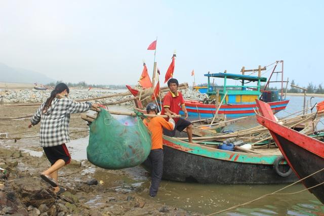 Hà Tĩnh: Mùa cá cháo bãi ngang những ngày cuối năm 2020 - 18
