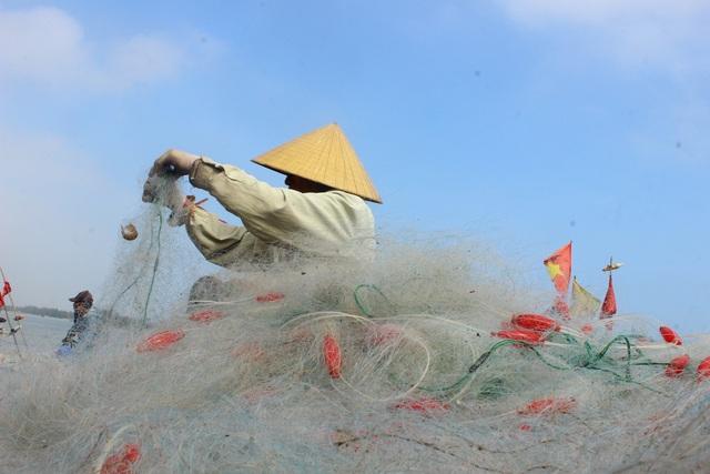 Hà Tĩnh: Mùa cá cháo bãi ngang những ngày cuối năm 2020 - 16