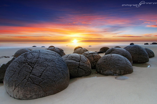 Những quả trứng khổng lồ với nhiều vết tích bí ẩn xuất hiện trên bãi biển - 2