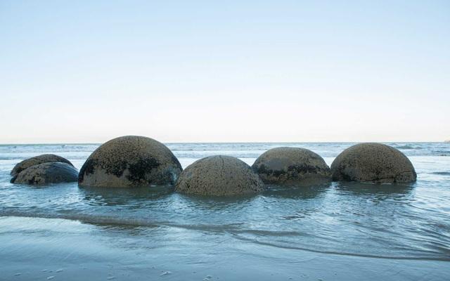 Những quả trứng khổng lồ với nhiều vết tích bí ẩn xuất hiện trên bãi biển - 3