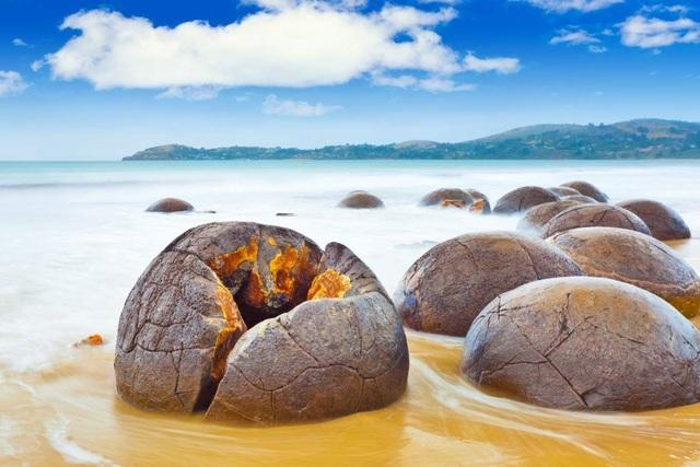 Những quả trứng khổng lồ với nhiều vết tích bí ẩn xuất hiện trên bãi biển - 5