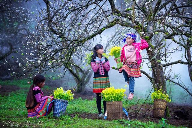 4 điểm được ví là thiên đường trắng Mộc Châu mùa hoa mận nở - 2