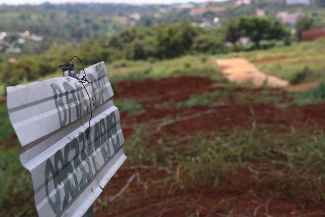 Vì sao không khởi tố vụ gom bán đất nông nghiệp, phá nát quy hoạch? - 3