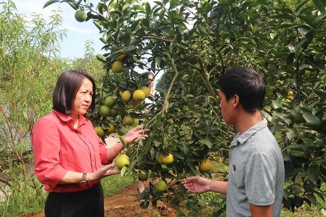 Lào Cai: Giảm nghèo nhanh và bền vững là sự kiện nổi bật năm 2020 - 1