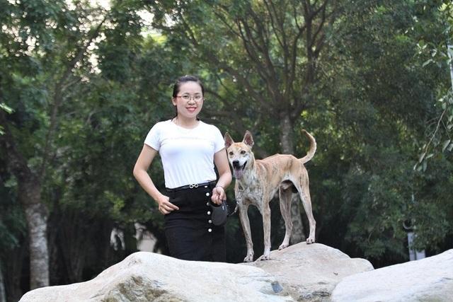 Chiêm ngưỡng 3 chú chó Phú Quốc độc nhất Việt Nam có tổng giá trị gần 1 tỷ đồng - 6
