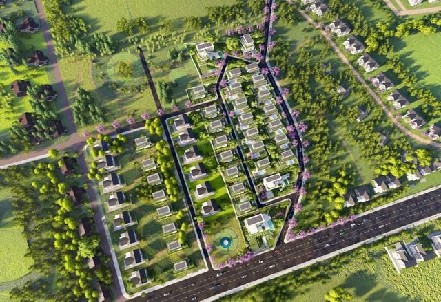 Thanh Niên Holdings phát triển  đầu tư mạnh mẽ tại Bảo Lộc - Lâm Đồng - 1