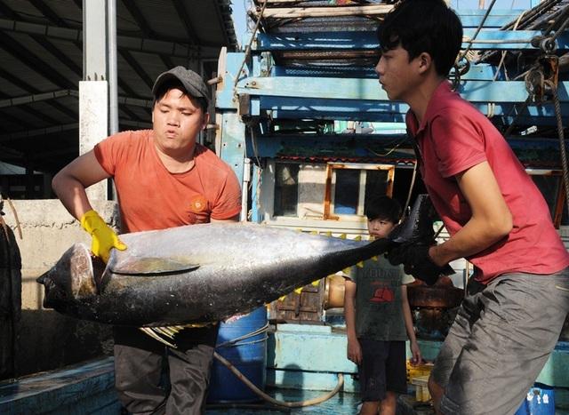Bình Định: Thưởng Tết mức thấp nhất 150 ngàn đồng - 2