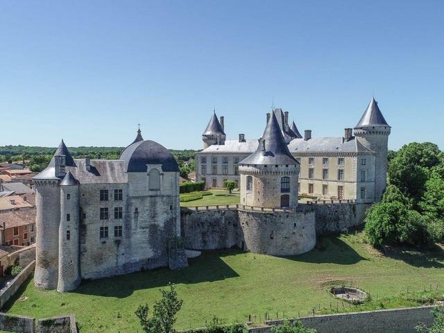 Không gian xa hoa trong tòa biệt thự Pháp cổ 1.000 năm giá 3,3 triệu USD - 1