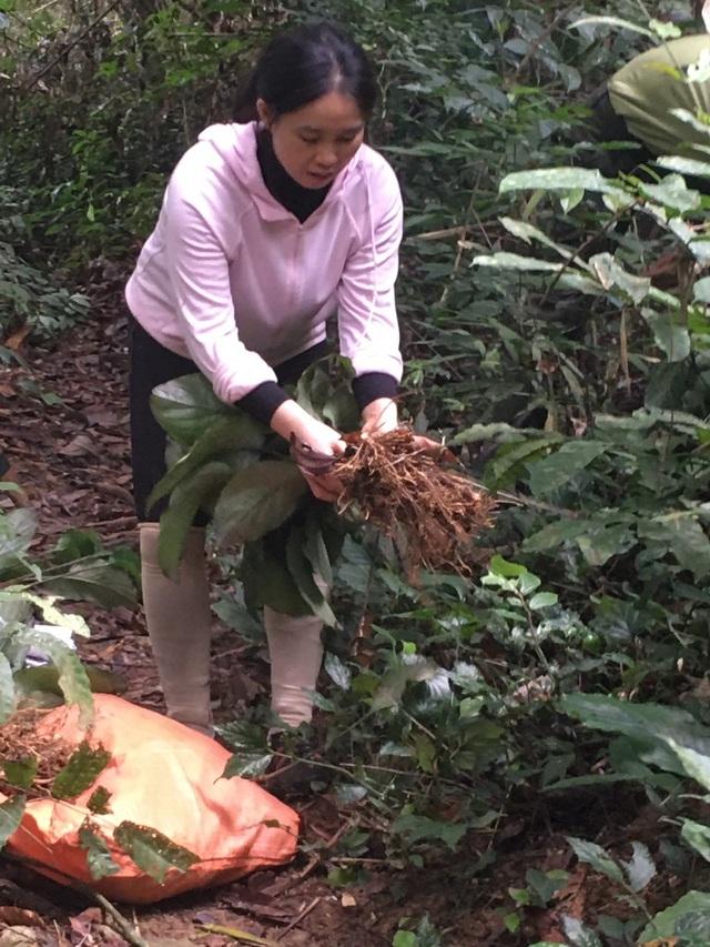 Nữ PGS trẻ tuổi nhất VN 2020: Giảng viên tuổi hổ đam mê bất tận về rừng - 4