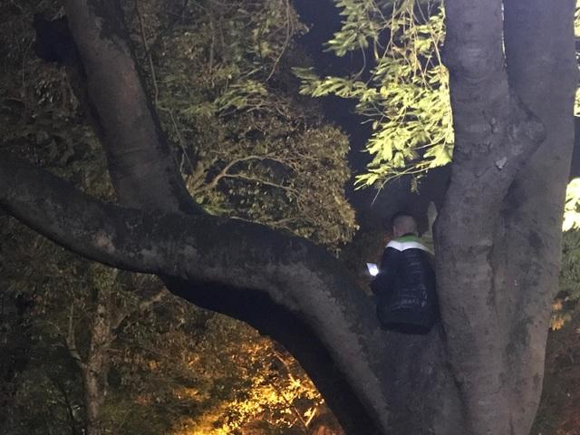 Người dân trèo lên Tháp Bút, mở tiệc ăn nhậu trên bãi cỏ để ngắm pháo hoa - 5