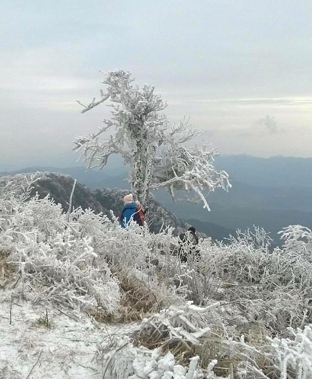 Khám phá những thiên đường ngắm băng tuyết siêu đẹp tại Việt Nam - 7