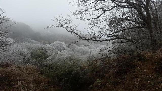 Khám phá những thiên đường ngắm băng tuyết siêu đẹp tại Việt Nam - 8