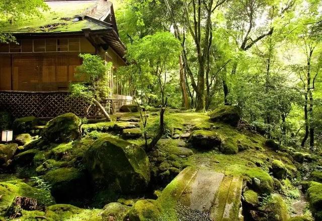 Nhà trọ hạng nhất nằm giữa rừng nguyên sinh cuối cùng ở Nara - 1
