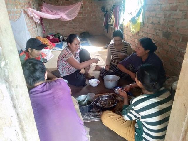 Gia Lai: Phu cà phê hái Tết đầu năm - 5