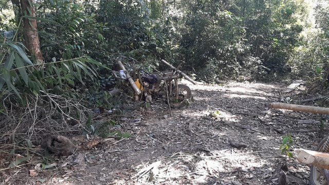 Bàng hoàng cả đoàn xe độ chế rầm rập tiến vào phá nát rừng xanh Tây Nguyên - 10