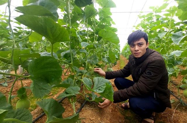 Nam thanh niên người Thái làm giàu từ đất, thu gần nửa tỷ đồng mỗi năm - 1