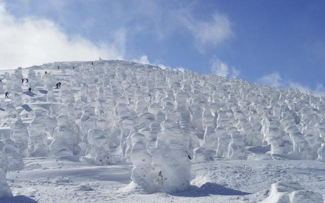 Trượt tuyết và tắm onsen tại nơi có cánh đồng quái vật tuyết - 3
