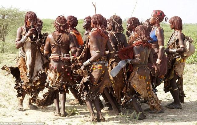 Lạ lùng bộ tộc đàn ông phải khỏa thân nhảy qua lưng bò để... lấy được vợ - 1