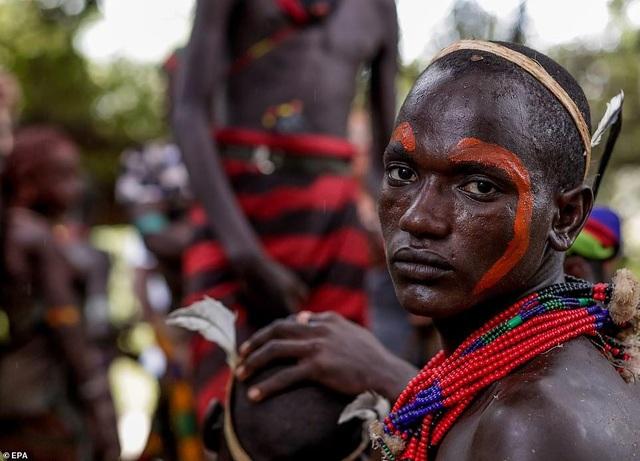 Lạ lùng bộ tộc đàn ông phải khỏa thân nhảy qua lưng bò để... lấy được vợ - 4