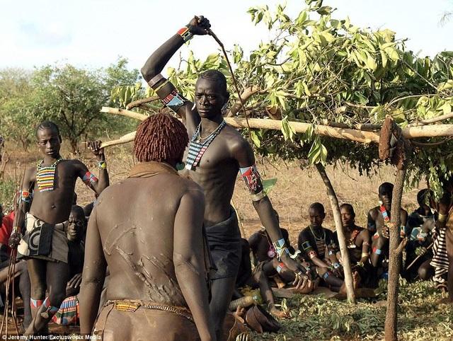 Lạ lùng bộ tộc đàn ông phải khỏa thân nhảy qua lưng bò để... lấy được vợ - 5