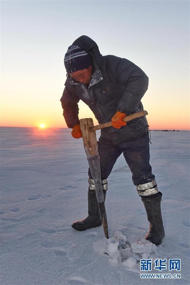 Bội thu gần 500 tấn cá dưới hồ dù nhiệt độ hạ sâu xuống mức -26 độ C - 2