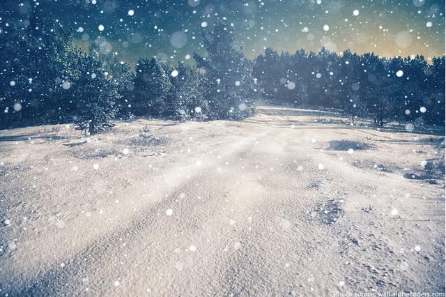 14 sự thật thú vị về mùa đông - 3