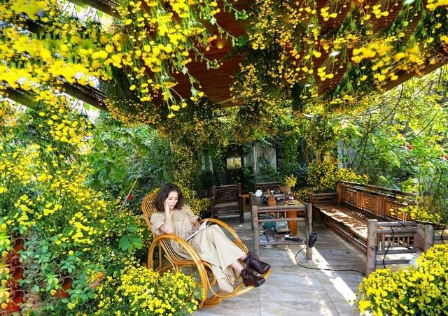 Vườn hoa khổng lồ trên sân thượng của người phụ nữ Hà Nội - 9