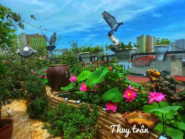 Vườn hoa khổng lồ trên sân thượng của người phụ nữ Hà Nội - 12