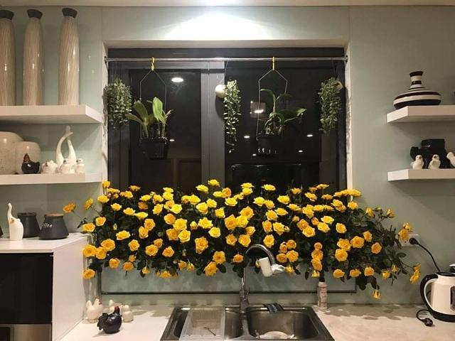 Vườn hoa khổng lồ trên sân thượng của người phụ nữ Hà Nội - 14