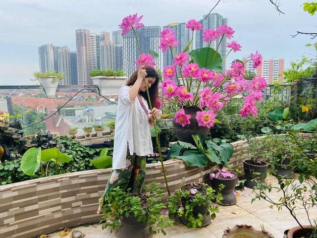 Vườn hoa khổng lồ trên sân thượng của người phụ nữ Hà Nội - 1