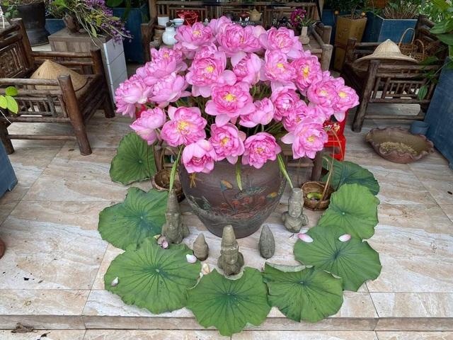 Vườn hoa khổng lồ trên sân thượng của người phụ nữ Hà Nội - 5